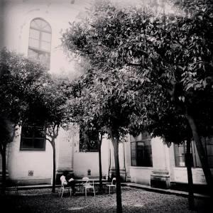 Roma - Casa delle Letterature