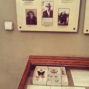 Casa Nabokov